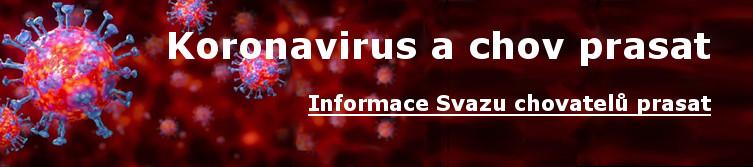 Souhrnná stránka s informacemi o Coronaviru z pohledu chovatelů prasat